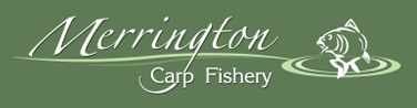 carp fishery,  Merrington Course pools
